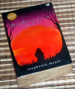 Stephenie Meyer: Twilight Saga 4: Breaking Dawn