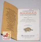 Mammals: A Guide to FamiliarAmerican Species